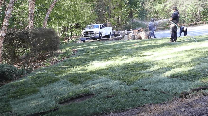 sod installation Atlanta GA